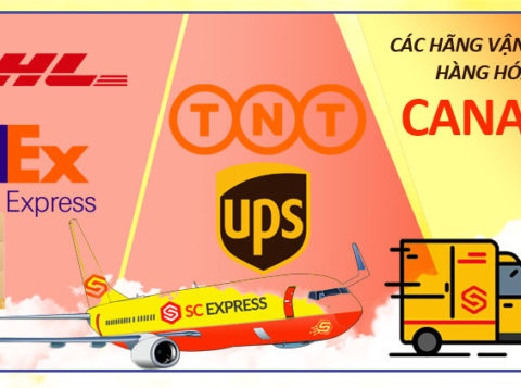 Hãng vận chuyển hàng hóa đi Canada